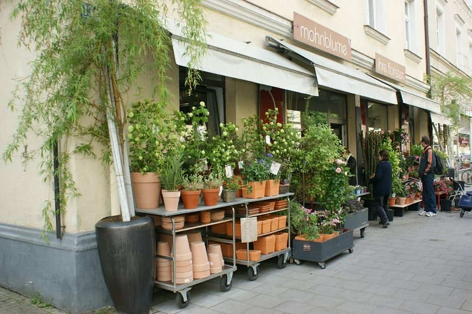 Mohnblume Sonja Husch Volkartstr Neuhausen Munchen Dienstleistung Willkommen