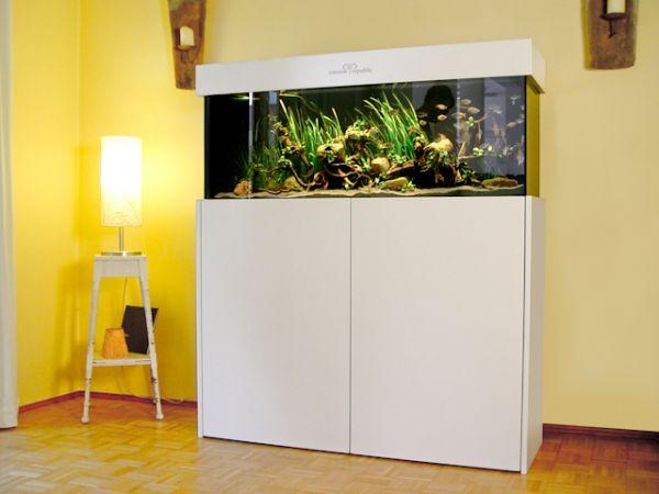 cocoon republic design aquarium weinbergerstr pasing m nchen cocoon republic design. Black Bedroom Furniture Sets. Home Design Ideas